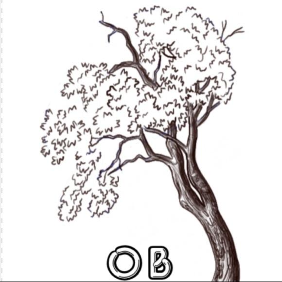 oakzboutique